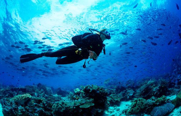 Adventure-diver