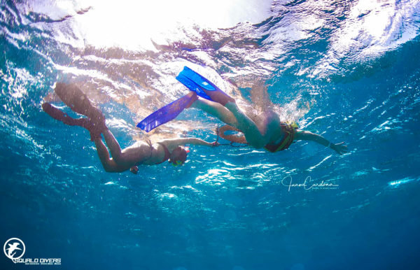 Cancun-Cenote-Snorkel
