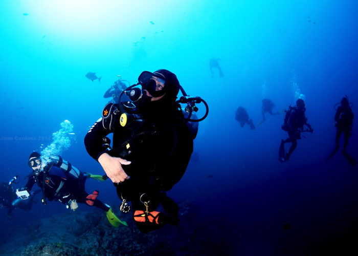 PADI Night Diver Course